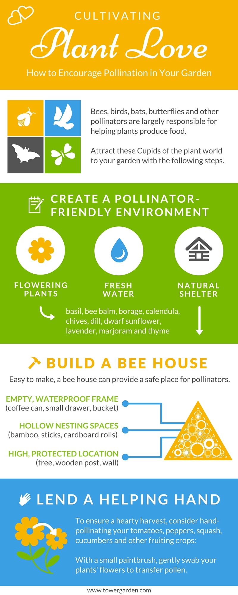 Pollination tips infographic