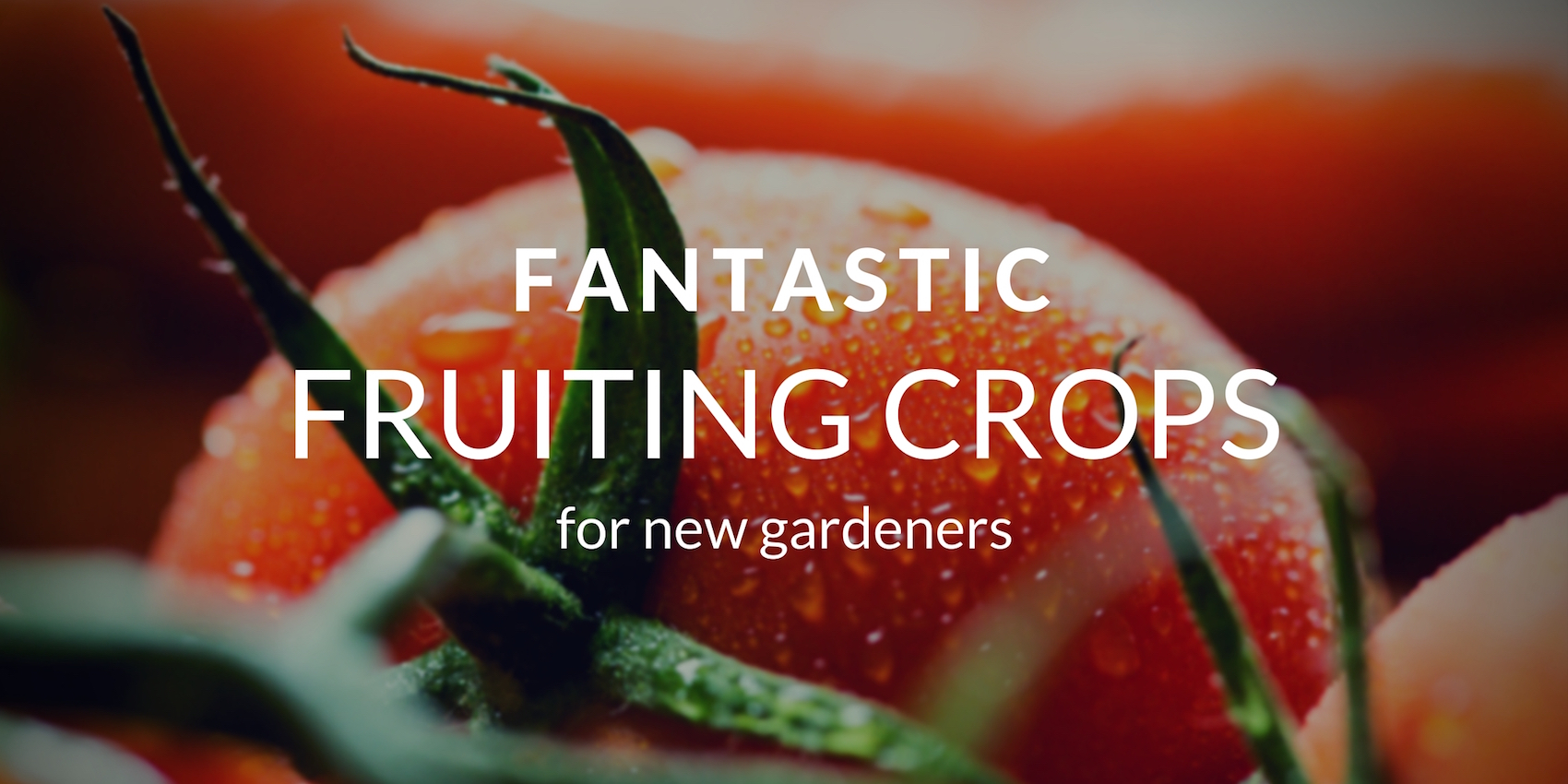 Fruits Every New Gardener Should Grow